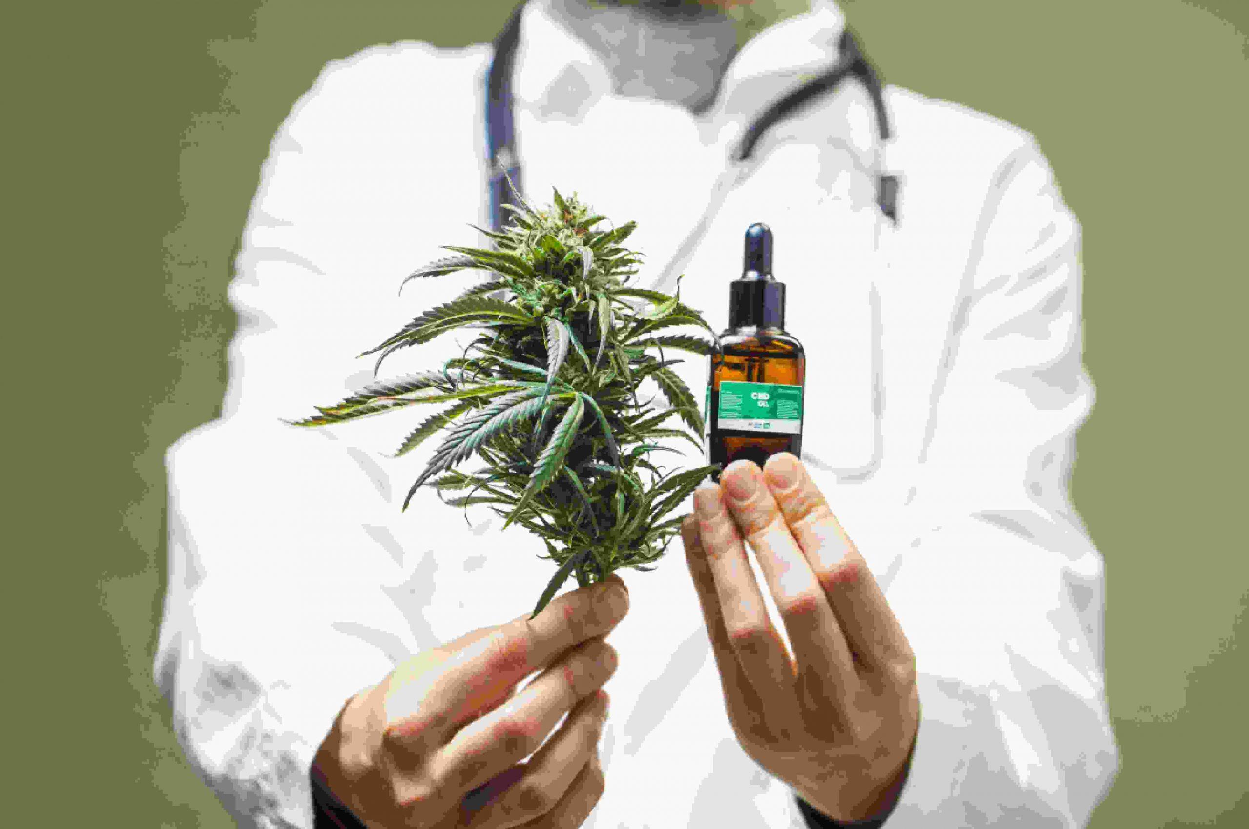 Cannabis 101_ Medical Vs. Psychoactive (1)